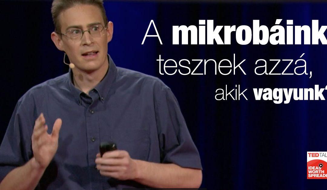 Rob Knight TED előadása
