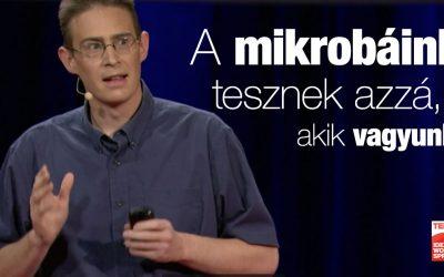 📺 Rob Knight előadása az emberi mikrobiomról: A mikrobáink tesznek azzá, akik vagyunk?